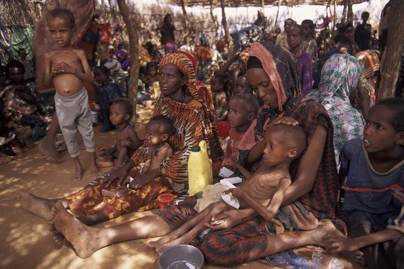 hunger in ethiopia essays Ethiopia is one of the world's poorest countries out of a population of around 80 million (2008) people, 35 million people are living in abject poverty in one of the world's poorest countries, where about 44 percent of the population lives under the poverty line, more than 12 million people are chronically or at least periodically food insecure.